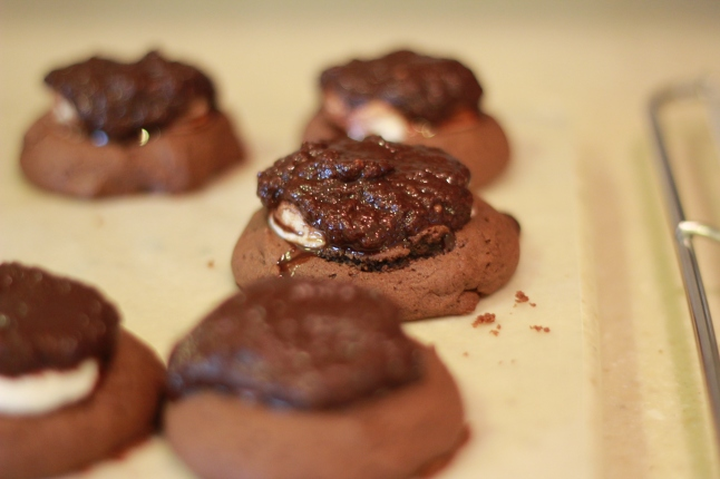 cookie bake, christmas, etc 037