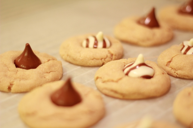 cookies, trip, misc 010