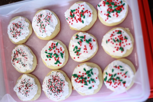 cookies, trip, misc 042
