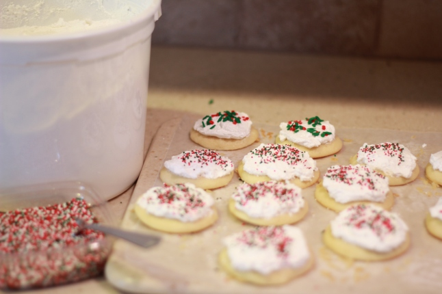 cookies, trip, misc 043