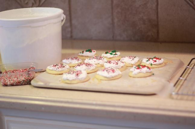 cookies, trip, misc 044