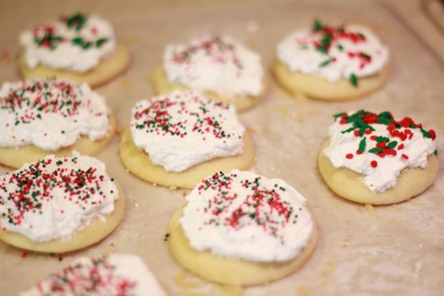 cookies, trip, misc 045