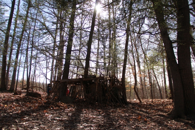 cabin and misc. march 2015 039